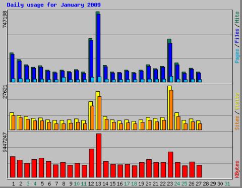 Jaunary 2009 traffic chart