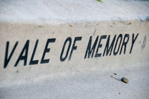 Vale of memory