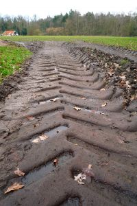 Tractor tyre trail