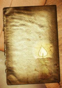 Paper burnt