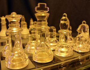 Warriors of chess