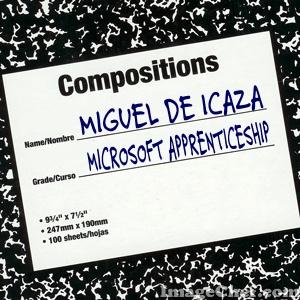 Microsoft apprenticeship