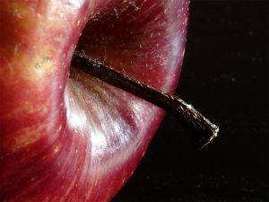 Apple session