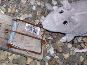 Nice toy rat