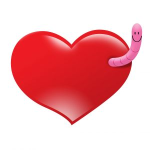 Heart and worm