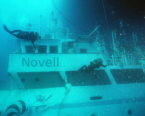 Divers find Novell