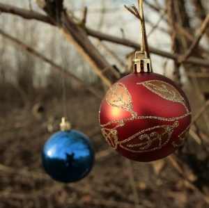 Christmas is near