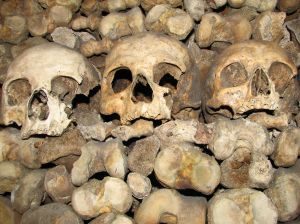 Bone texture