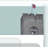 Fort banner