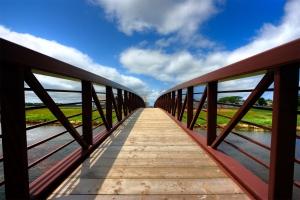Wide angle bridge