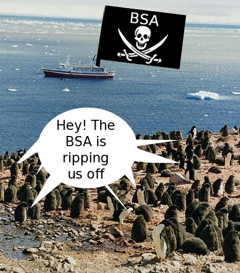 BSA as a pirate