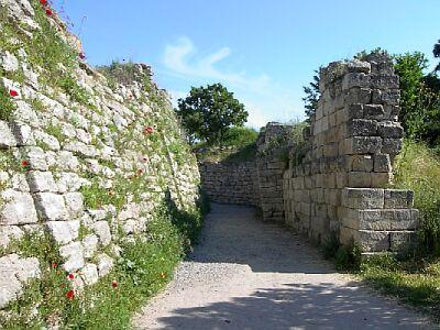 Troy wall