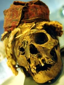 Inca skull from Peru