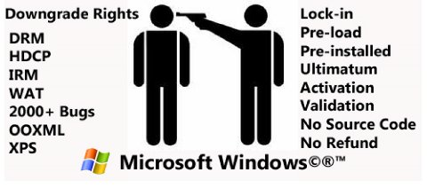 Microsoft in words