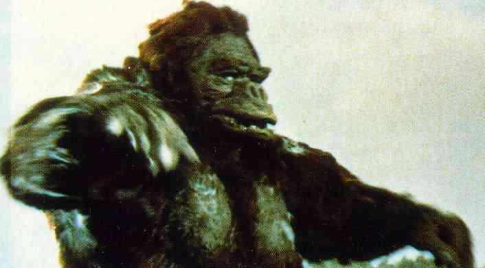 Kong Toho