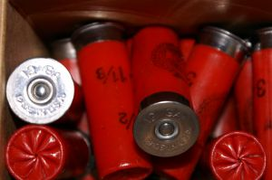 Shotgun shells