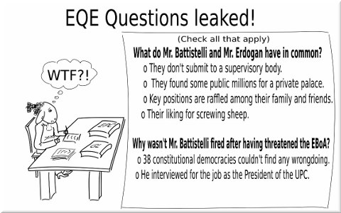 European qualifying examination (EQE)