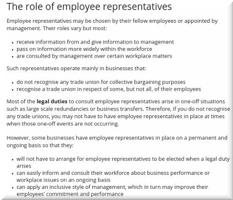 The role of employee representatives