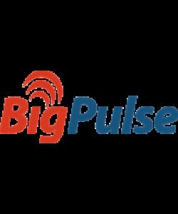 BigPulse