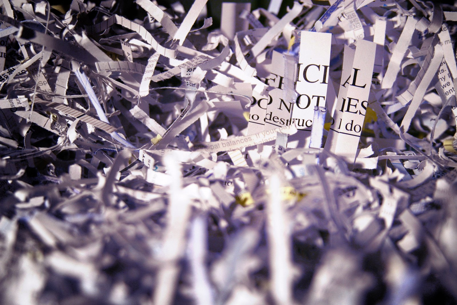 Some shredded paper