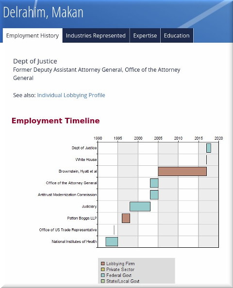 Revolving Door: Makan Delrahim Employment Summary