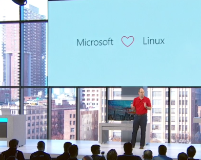 Zemlin loves Microsoft
