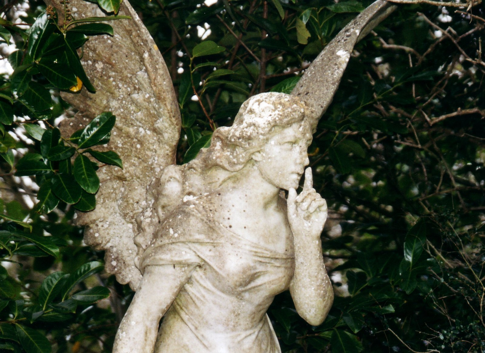 An angel in cemetery