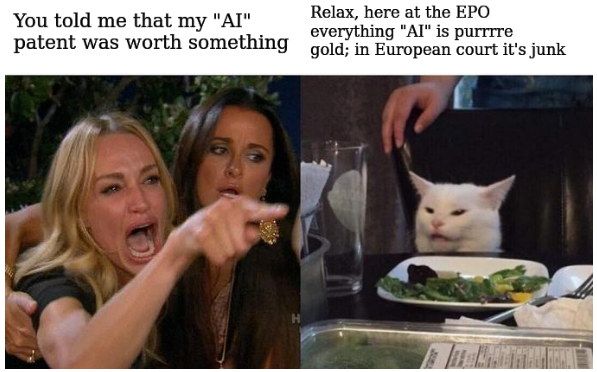 You told me that my 'AI' patent was worth something. Relax, here at the EPO everything AI' is purrrre gold; in European court it's junk.