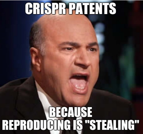 CRISPR patents; Because reproducing is 'stealing'