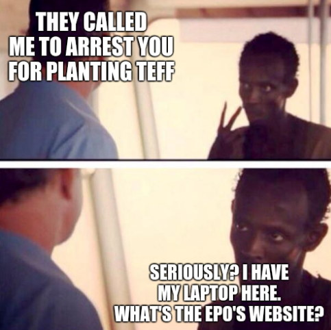 They called me to arrest you for planting teff... Seriously? I have my laptop here. What's the EPO's Website?