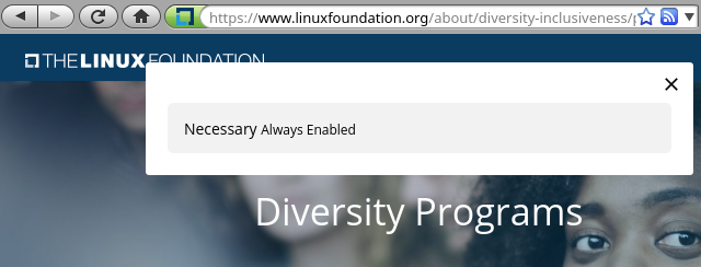 Linux Foundation diversity programs