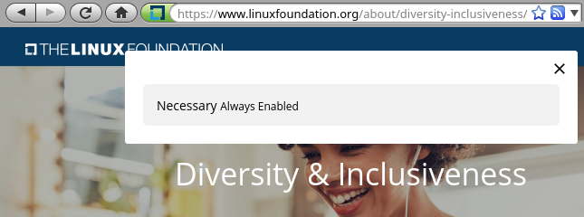 Linux Foundation diversity