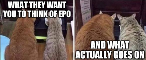 Fat cats: What they want you to think of EPO and what actually goes on