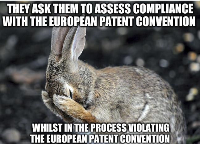 Aftermath of the tortoise and the hare: They ask them to assess compliance with the European Patent Convention whilst in the process violating the European Patent Convention