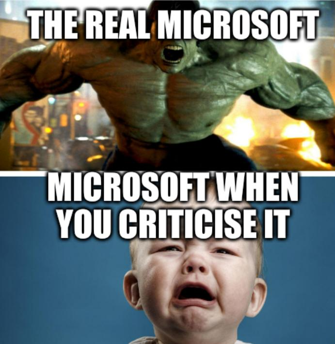 The real Microsoft; Microsoft when you criticise it