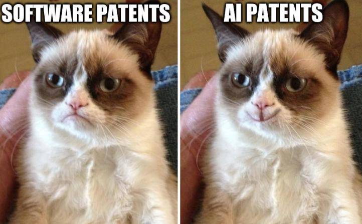Software patents and AI patents