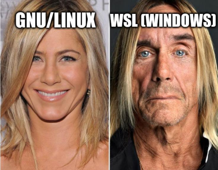 WSL VS GNU/Linux