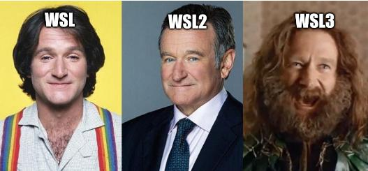 Robin Williams Before-After: WSL3