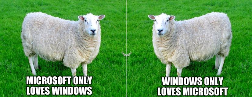Two Sided Sheep: Microsoft only loves Windows and Windows only loves Microsoft