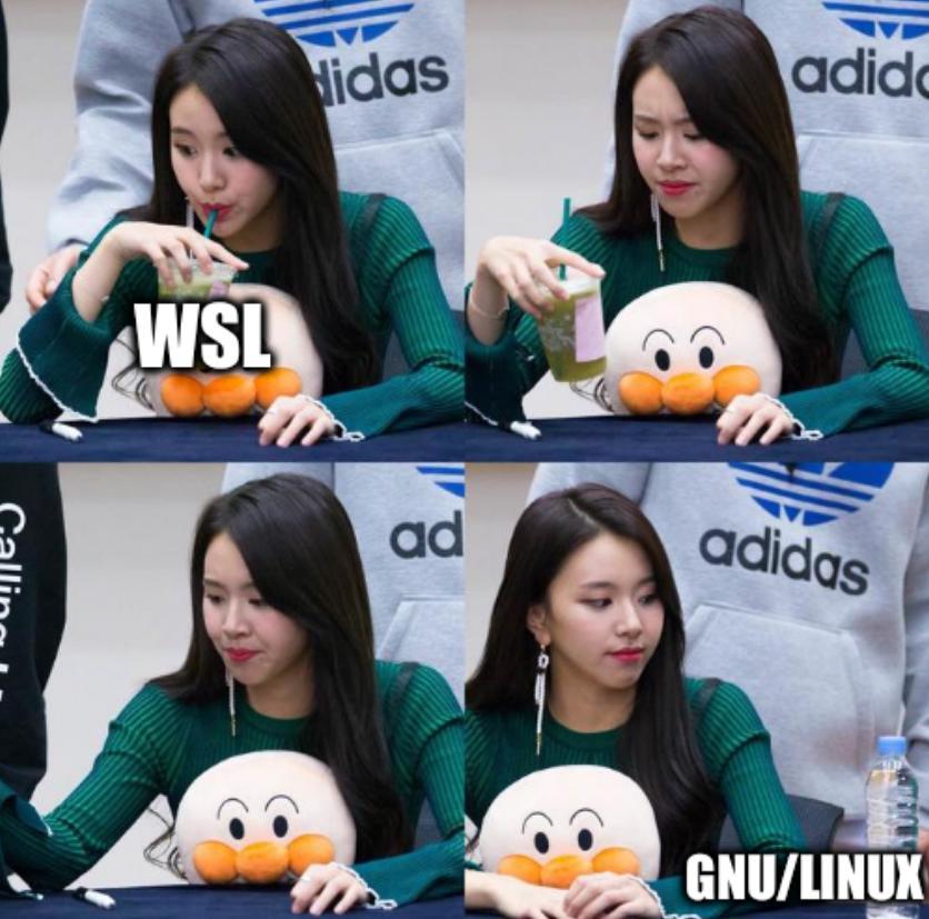 Asian Girl Drinking: GNU/Linux vs WSL