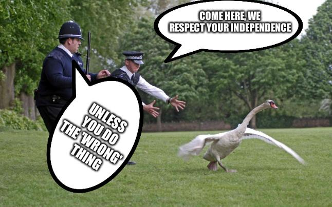 Cops and Swan/Goose: Come here, we respect your independence; unless you do the 'wrong' thing