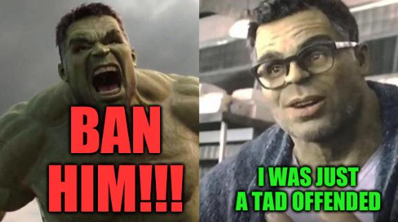 Brute hulk vs intellectual hulk: Ban him!!! I was just a tad offended