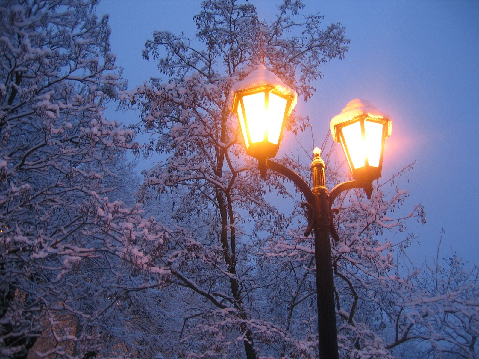 Lamps in winter