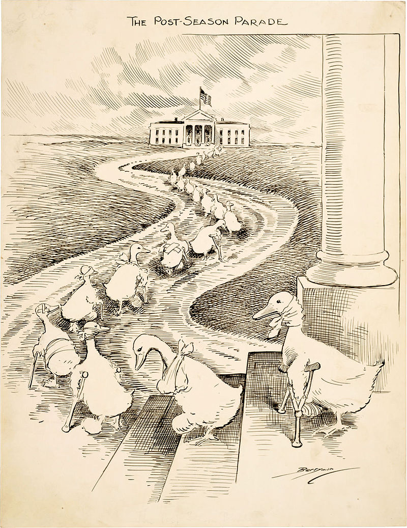 The lame ducks depicted in this Clifford K. Berryman cartoon are defeated Democrats heading to the White House hoping to secure political appointments from then President Woodrow Wilson.