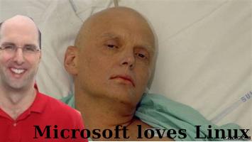 Microsoft love