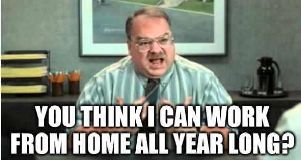 You think I can work from home all year long?