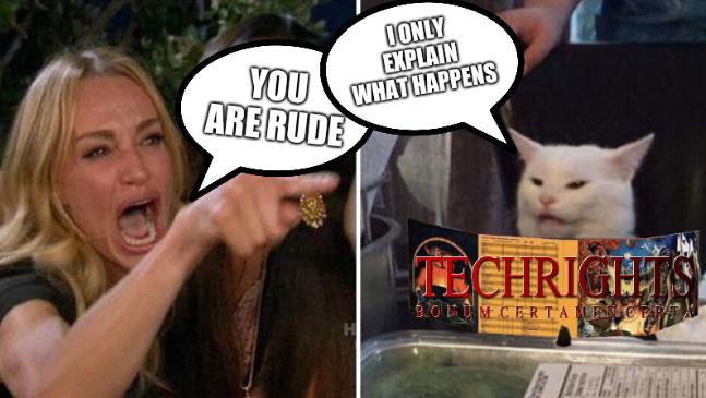 Woman yelling at cat DnD: You are rude; I only explain what happens