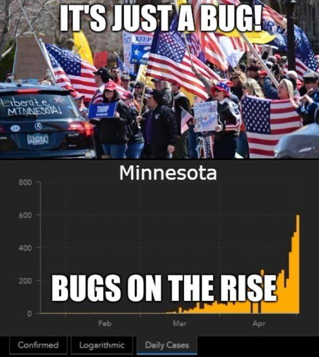 It's just a bug! And bugs on the rise