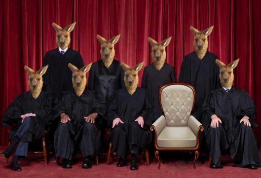The kangaroo judges