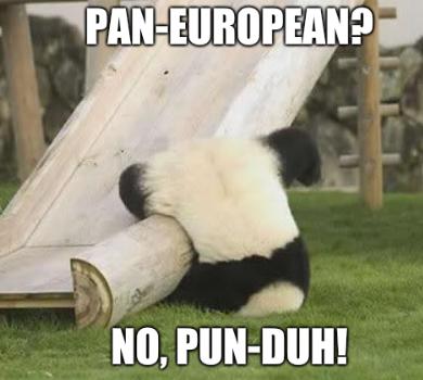 Pan-European? No, pun-duh!
